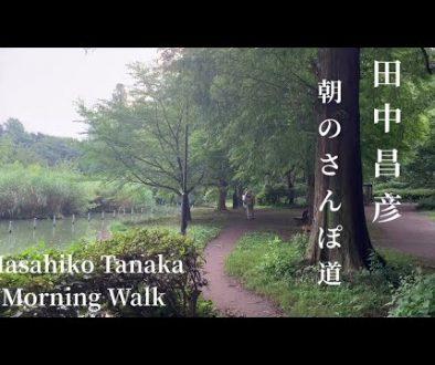 朝の散歩道-Morning-Walk-